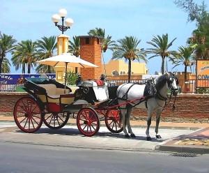 coche caballo